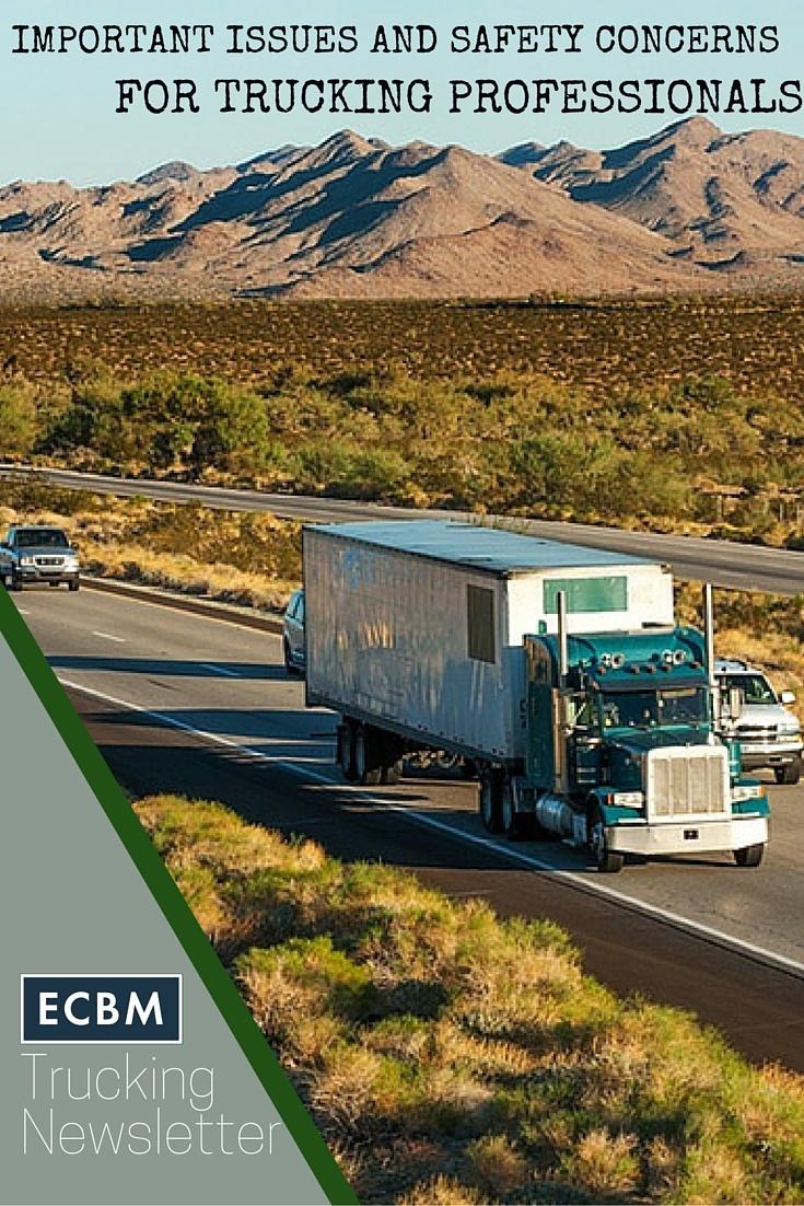 Free_Trucking_Owner_Professional_Logistics_Newsletter